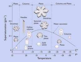 Snowflake science
