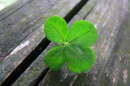 Evolutionary reasons for believing in luck