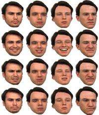 Researchers uncover how the brain processes faces