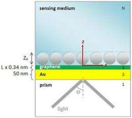 Highly sensitive graphene biosensors based on surface plasmon resonance