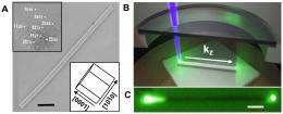 Lighten up: Polaritons with tunable photon-exciton coherence