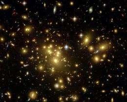 A magnified supernova