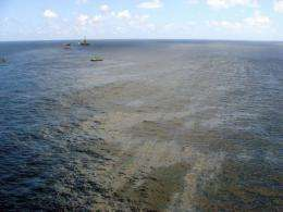Brazilian authorities say the oil slick has been reduced to two square kilometers