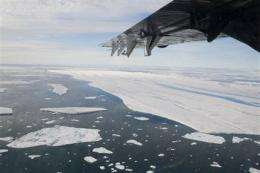 Canadian Arctic nearly loses entire ice shelf (AP)