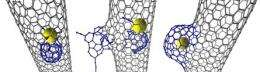 Carbon nanotube structures changed by 'attack' from within, researchers discover