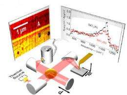 CIC nanoGUNE develops Nano-FTIR-nanoscale infrared spectroscopy with a thermal source