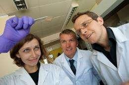 Researchers develop golden window electrodes for organic solar cells