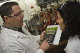 E. coli metabolism reversed for speedy production of fuels, chemicals