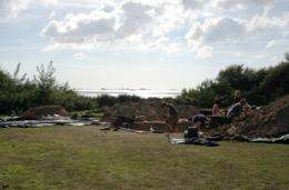 Excavation of islands around Britain to establish origins of Neolithic period