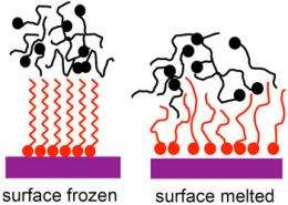 Expanding the degrees of surface freezing
