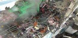 Experts: Ocean life can handle radioactive leaks (AP)