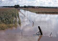 Fruits and vegetables submerged by flood water are not safe to eat