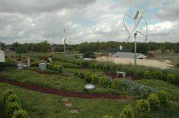 Green roofs save money, energy but challenge Texas plants