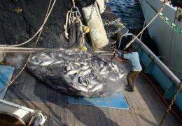 Islands are demanding a greater share of fishing revenue which would mean updating the treaty.