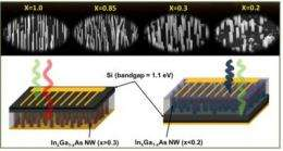Nanowires could be solution for high performance solar cells