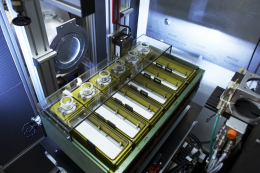 Neutrons answer shampoo formulation puzzle