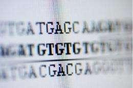 New insight into fragile gene