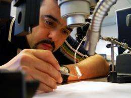 NJIT researcher testing micro-electronic stimulators for spinal cord injuries