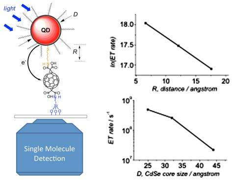 Pairing quantum dots with fullerenes for nanoscale photovoltaics