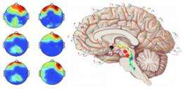Patients in a minimally conscious state remain capable of dreaming during their sleep