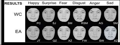 Perceptions of facial expressions differ across cultures