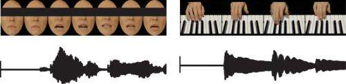 Playing music alters the processing of multiple sensory stimuli in the brain
