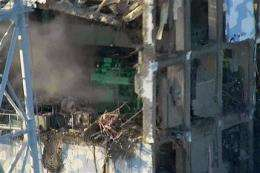 Plutonium in troubled reactors, spent fuel pools (AP)