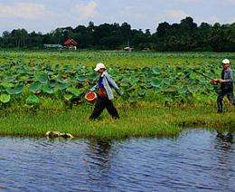 Possible to have same power with less damage with alternative Mekong dams