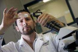 Research breakthrough on male infertility