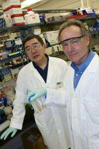 Salt-loving microbe provides new enzymes for the production of next-gen biofuels