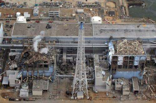 Since the impact of the disaster on Japan's nuclear industry, officials have been slammed for promoting the sector