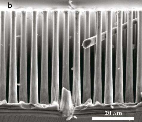 Cheap, abundant cathode material found for producing hydrogen fuel (w/ video)