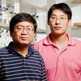 Team identifies new breast cancer tumor suppressor and how it works