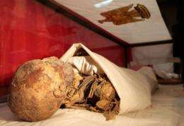 The mummified remains of Queen Hatshepsut, ancient Egypt's most famous female pharaoh