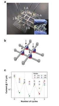 Soft Matter Memristors image