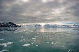 View of an Arctic fjord