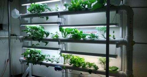 CU students to help NASA develop astronaut food