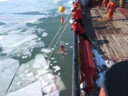 Lake Erie algae, ice, make a nice mix in winter