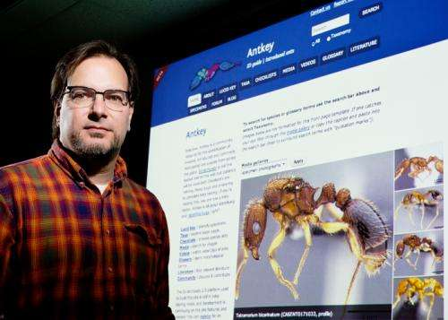 Name that ant! New online tool helps identify alien ant invaders