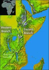 Scientists suggest new age for East African Rift