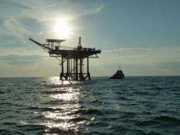 Study confirms oil from Deepwater Horizon disaster entered food chain in the Gulf of Mexico