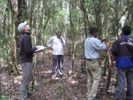 New research can save tropical forests