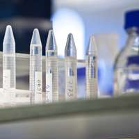 Experimental 'stapled peptide' drug blocks key cancer molecule