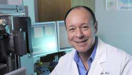 Study suggests new treatment target for glioblastoma multiforme