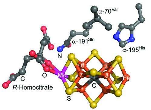 Biochemists convert greenhouse gas to fuel