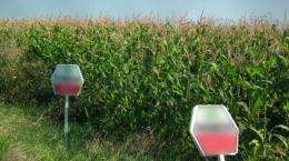 A European-wide network for systematic GMO impact assessment