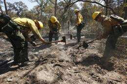 A fire fighting crew from the Lassen National Forest in California clean up hot spots
