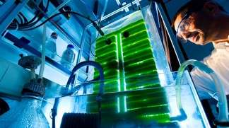Algae-fueled bioreactor shows promise as synthetic natural gas producer