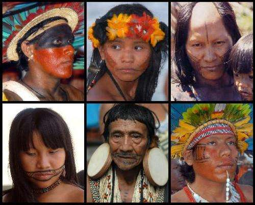 Amazonian tribal warfare sheds light on modern violence, anthropologist says