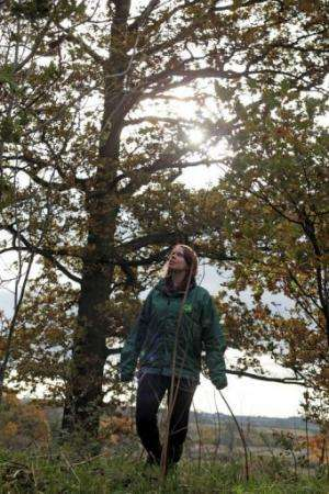 An awareness raising campaign aims to help people identify diseased trees